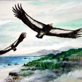 """""""Condors at Big Sur"""""""