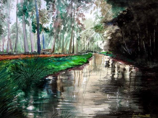 """Sweet Springs Nature Preserve"""