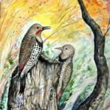 """Red-Shafted Flickers"""